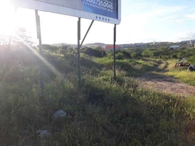 Ótima área com 4.4 hectares, em Caruaru-PE. Vende-se completa ou em partes.Aceita trocas! - Foto 4