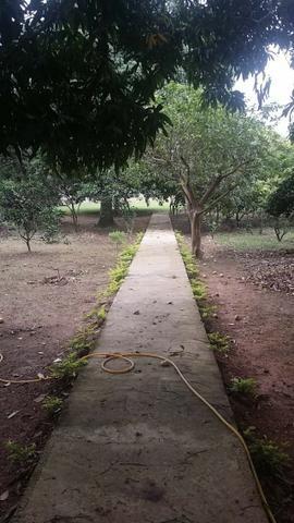 Sítio 9.000 m² com 2 casas - piscina - área social - todo murado - Itaguaí - Foto 3
