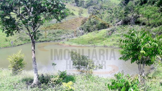 Fazenda de 100 alqueires paulistas, Campina Grande do Sul / PR - Foto 19