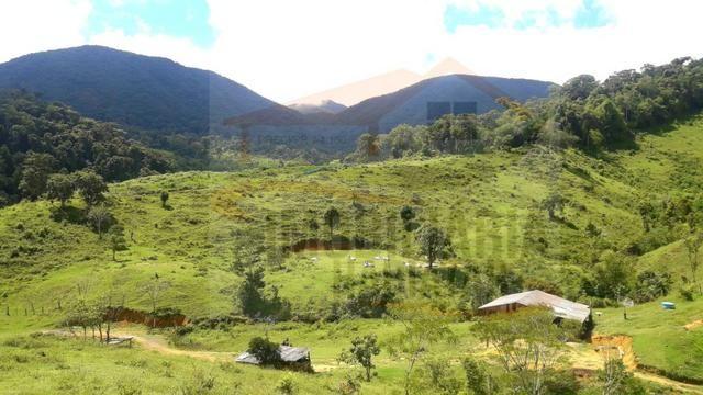 Fazenda de 100 alqueires paulistas, Campina Grande do Sul / PR - Foto 2