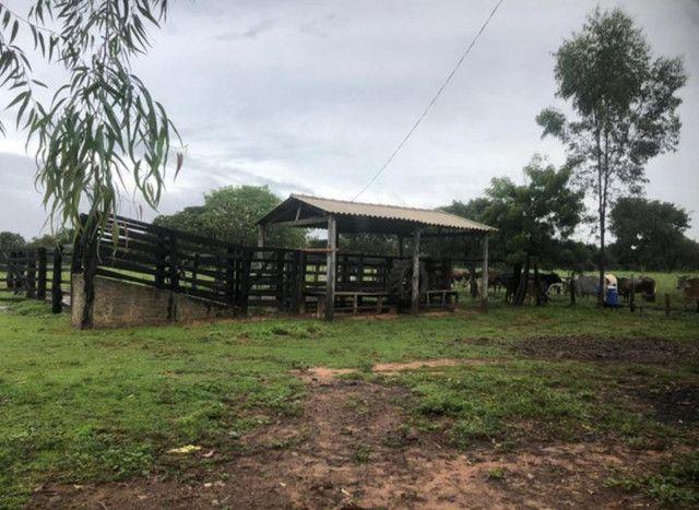 Fazenda na Rodovia BR-324 Candeias (parcelamento no boleto) - Foto 6