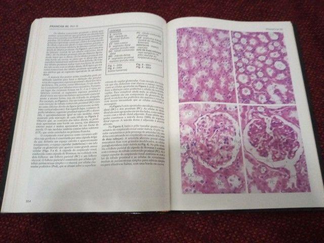 Livro De Histologia (ross) - Texto E Atlas - 2 Edição - Foto 5