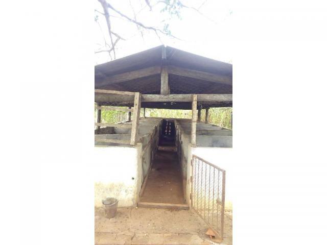 Chácara à venda em Zona rural, Pocone cod:20534 - Foto 8