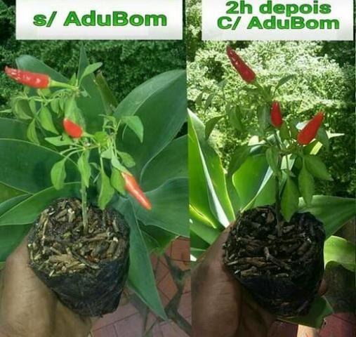 Super Fortificante Organico AduBom