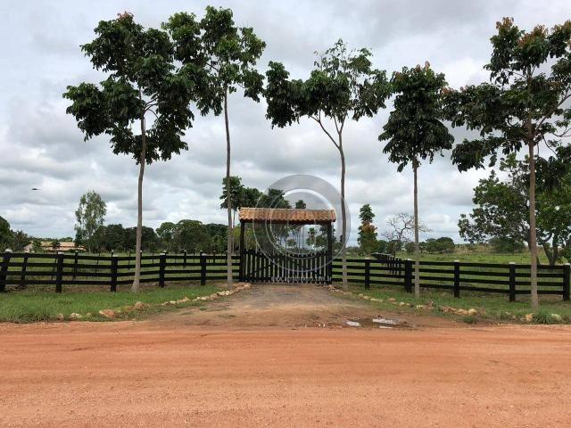 Fazenda 490 ha estrada de cáceres - Foto 8