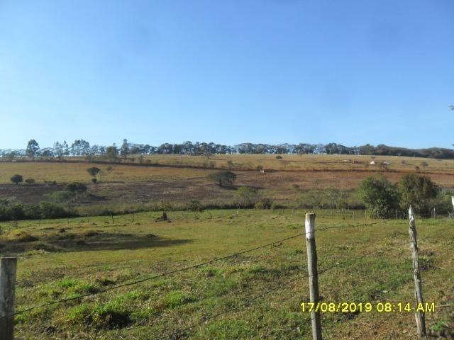 174B/ Belo haras de 12 ha pertinho da cidade de Entre Rios de Minas - Foto 11