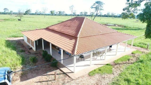 Fazenda em Campo Grande 4mil hectares!! - Foto 2