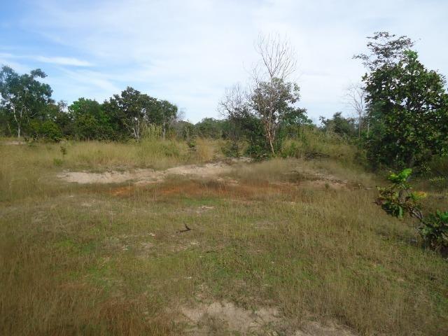 Fazenda em Monte do Carmo-To, 190ha - Foto 5