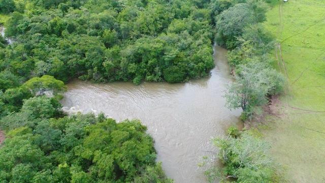 Fazenda em Campo Grande 4mil hectares!! - Foto 8