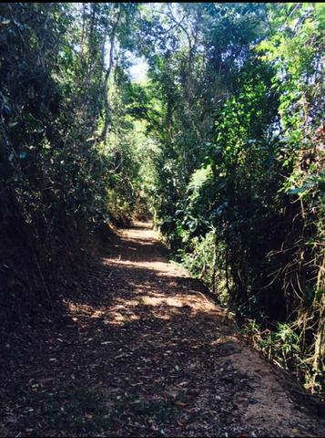 Sitio em Domingos Martins (Pedra Branca) - Foto 3