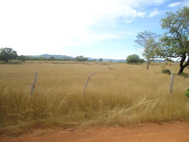 Fazenda em Monte do Carmo-To, 190ha - Foto 3