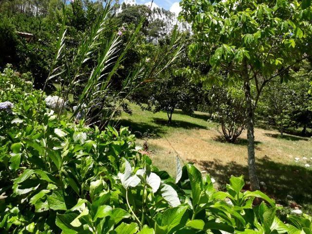 Marechal Floriano - sitio a 6 km da cidada - Foto 13
