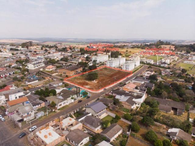 Terreno à venda em Colonia dona luiza, Ponta grossa cod:V1060 - Foto 5