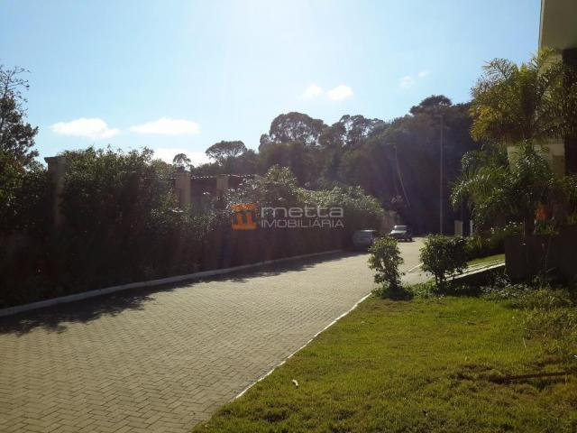 Terreno residencial à venda, itacorubi, florianópolis. - Foto 8