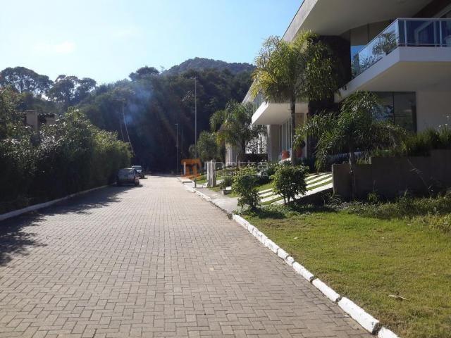 Terreno residencial à venda, itacorubi, florianópolis. - Foto 13