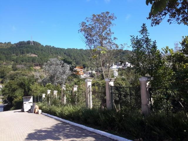 Terreno residencial à venda, itacorubi, florianópolis. - Foto 6