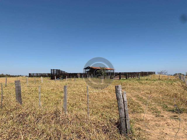 Fazenda 490 ha estrada de cáceres - Foto 20