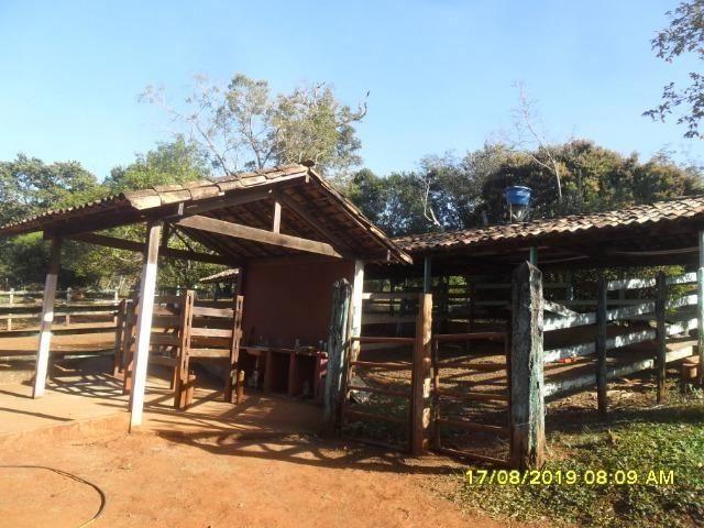 174B/ Belo haras de 12 ha pertinho da cidade de Entre Rios de Minas - Foto 9