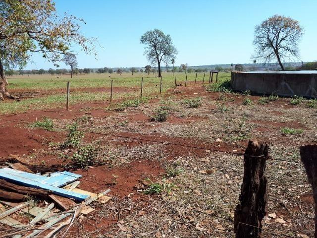 Fazenda em Campo Grande 4mil hectares!! - Foto 13