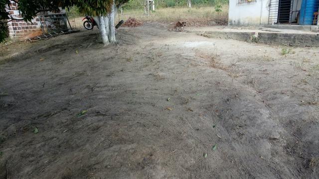 Sitio , fazenda, chácara - Foto 2