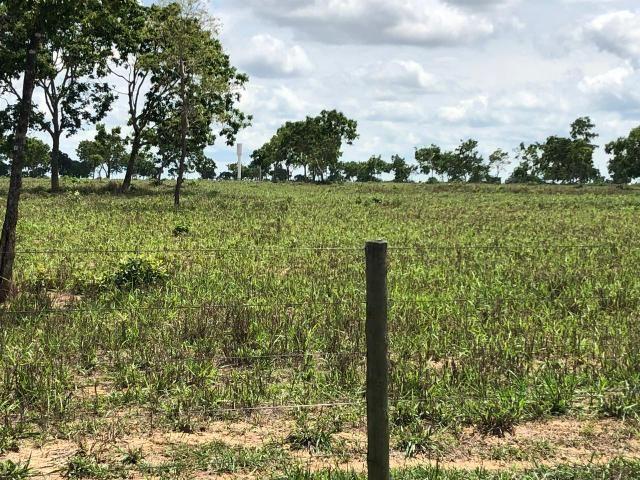 Fazenda 1.163 hectares em Livramento MT - Foto 14