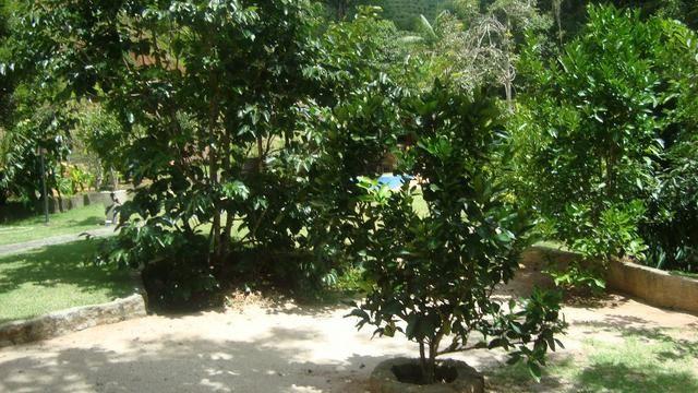 Sitio marechal floriano 2 hequitares - Foto 9