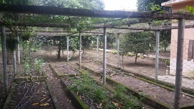 Sítio 9.000 m² com 2 casas - piscina - área social - todo murado - Itaguaí - Foto 10