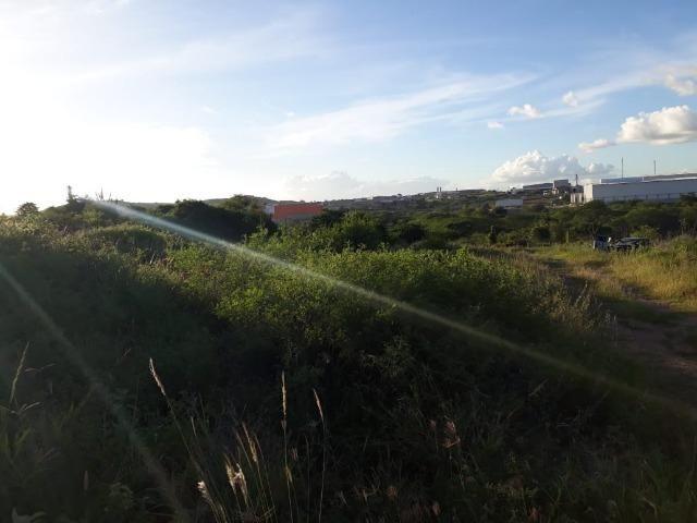 Ótima área com 4.4 hectares, em Caruaru-PE. Vende-se completa ou em partes.Aceita trocas! - Foto 5