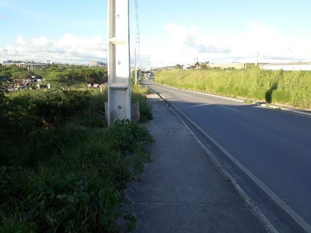 Ótima área com 4.4 hectares, em Caruaru-PE. Vende-se completa ou em partes.Aceita trocas! - Foto 18