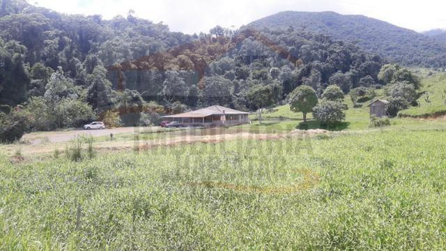 Fazenda de 100 alqueires paulistas, Campina Grande do Sul / PR - Foto 18