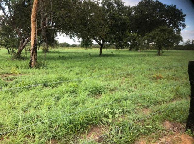 Fazenda na Rodovia BR-324 Candeias (parcelamento no boleto) - Foto 9