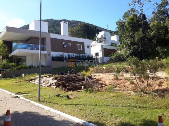 Terreno residencial à venda, itacorubi, florianópolis. - Foto 7
