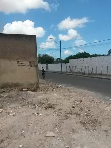 Terreno, Loteamento Acauã, rua asfaltada - Foto 5