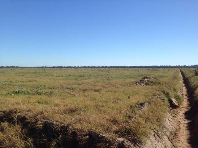 Fazenda 50.000 há (Porteira Fechada) - Foto 8