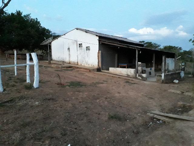 Fazenda à venda, por R$ 900.000.00 - Zona Rural - Luziânia/GO - Foto 19