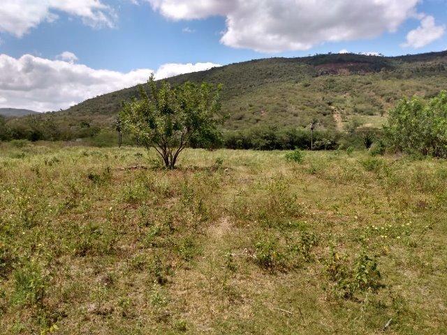 Vendo uma excelente área no bairro da Gameleira da Sede em Campo Formoso / Ba. - Foto 9