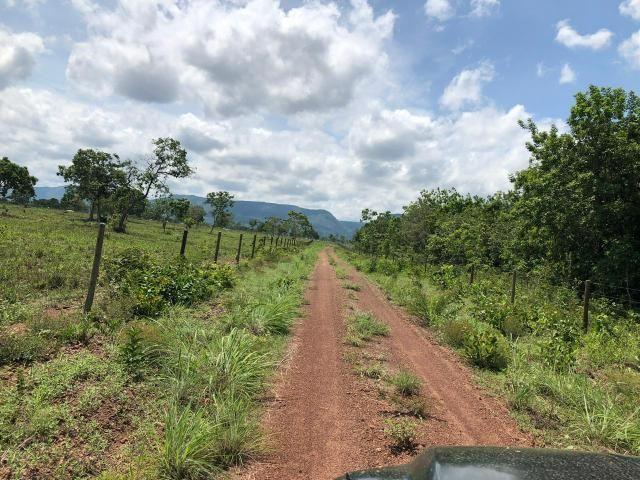 Fazenda 1.163 hectares em Livramento MT - Foto 16