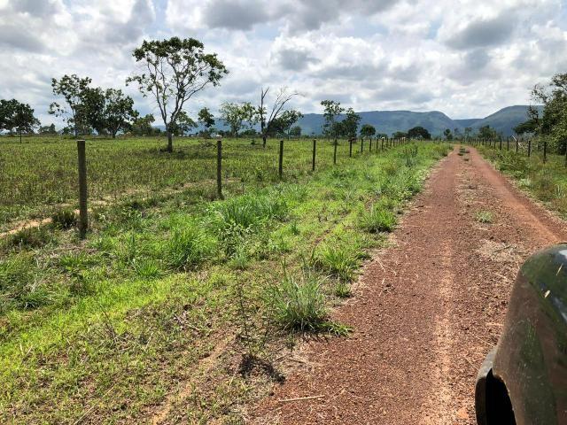 Fazenda 1.163 hectares em Livramento MT - Foto 15