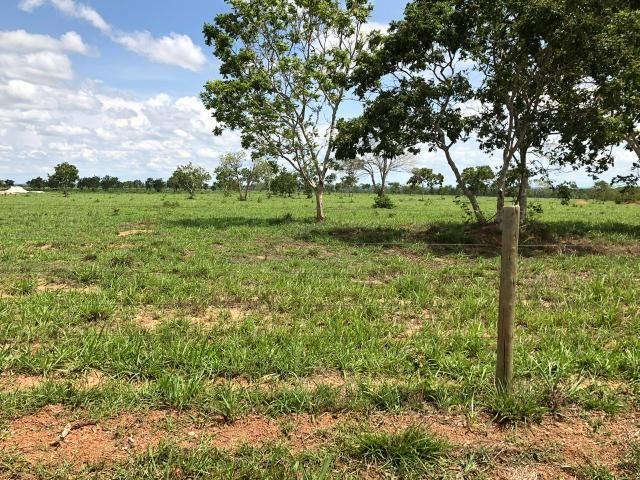 Fazenda 1.163 hectares em Livramento MT - Foto 7