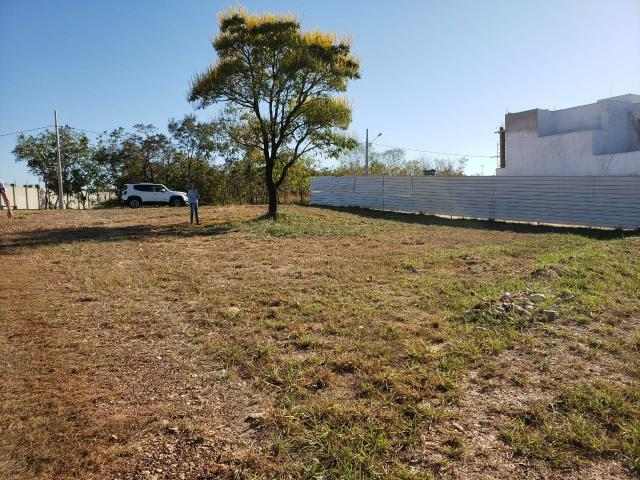 Terreno Florais Itália Cuiabá, 558,00 m², Esquina e em Frente Área Verde - Foto 18