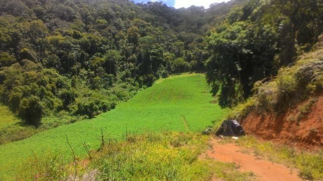 Lindo terreno de 2,8 hectares em Delfim Moreira Sul de Minas Gerais - Foto 2