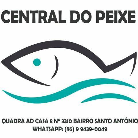 Central do Peixe - Foto 3