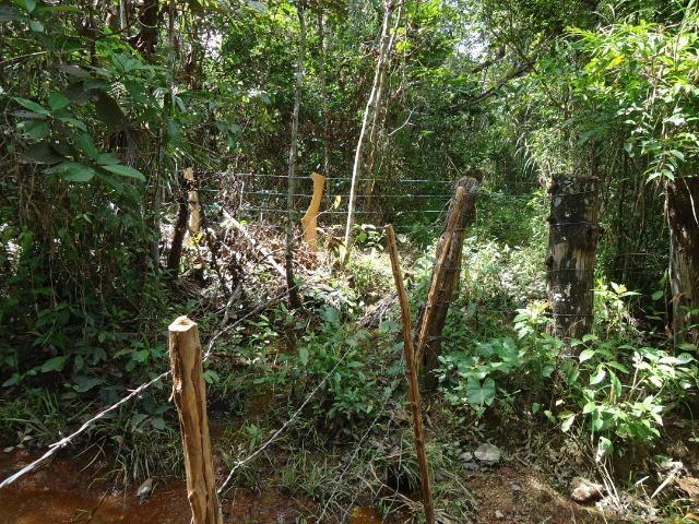 Fazenda em Monte do Carmo-To, 190ha - Foto 9