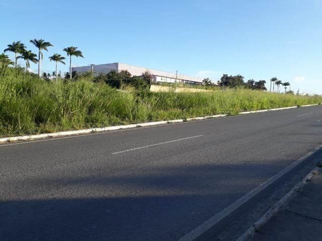 Ótima área com 4.4 hectares, em Caruaru-PE. Vende-se completa ou em partes.Aceita trocas! - Foto 19