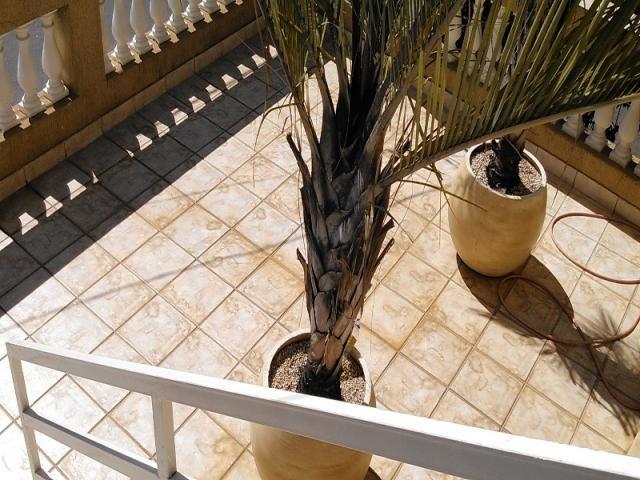 Casa à venda no Jaraguá (Cod CA00188) - Foto 3