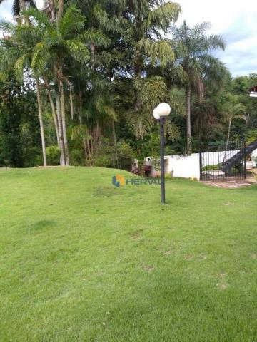 Chácara com 4 dormitórios à venda, 4950 m² por R$ 1.300.000 - Parque Alvamar - Sarandi/PR - Foto 10