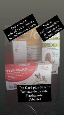 Ração Hills Prescription Diet+Tratamento para pet com calculos renais - Foto 2