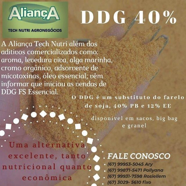 Ddg de milho alta proteína - Foto 5