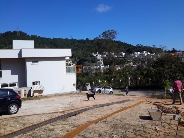 Terreno residencial à venda, itacorubi, florianópolis. - Foto 10