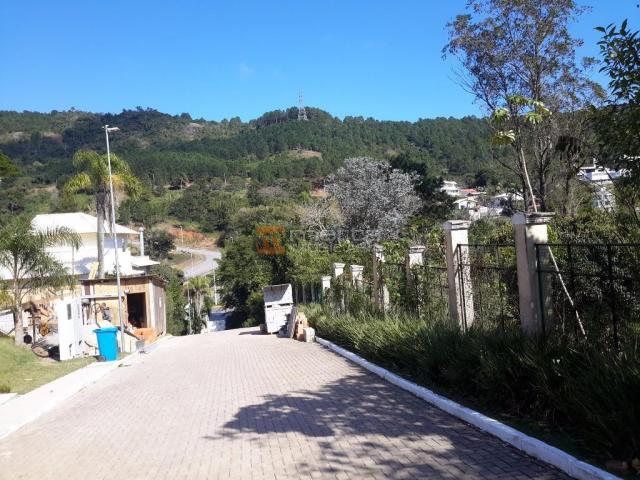 Terreno residencial à venda, itacorubi, florianópolis. - Foto 5